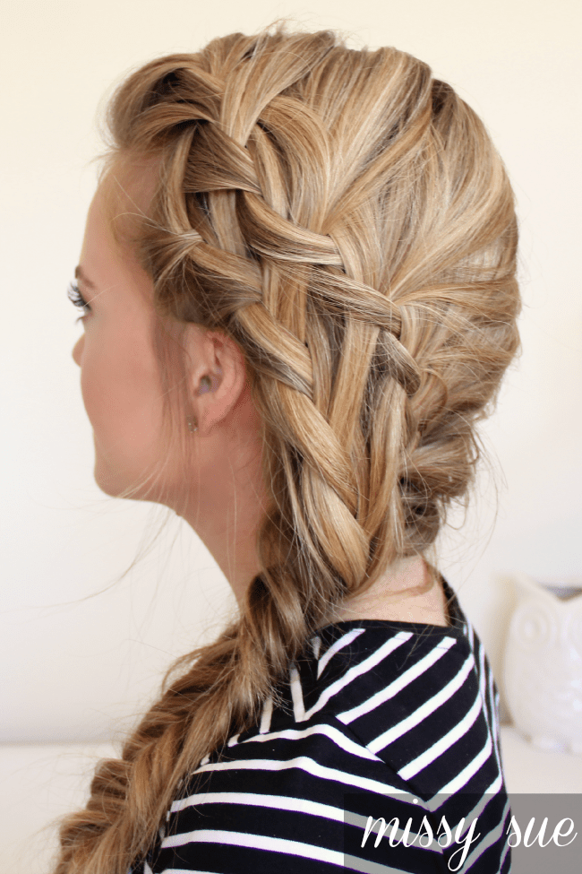 Double Waterfall Braid and Fishtail Side Braid