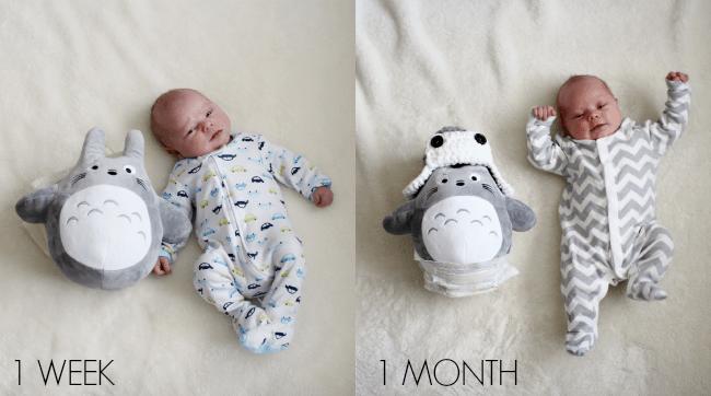 cohen-1-week-vs-1-month