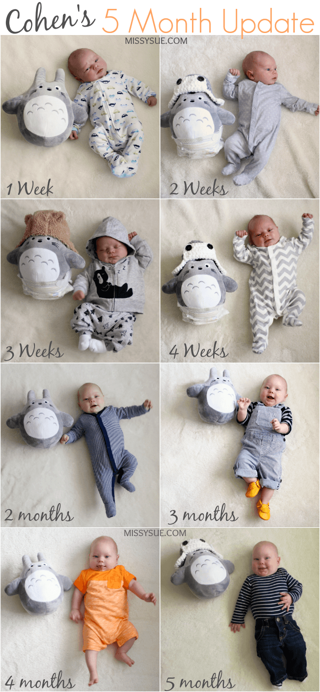 Cohen's Five Month Update | MissySue.com